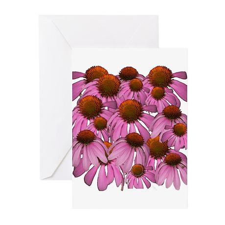 Purple Coneflowers {Echinacea Greeting Cards (Pk o