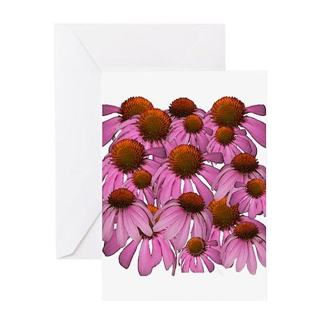 Purple Coneflowers {Echinacea Greeting Card