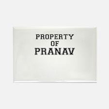 Property of PRANAV Magnets