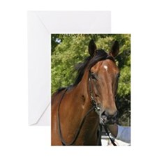 Cute Thoroughbred racing Greeting Cards (Pk of 20)