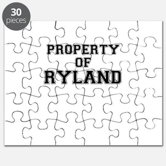 Property of RYLAND Puzzle