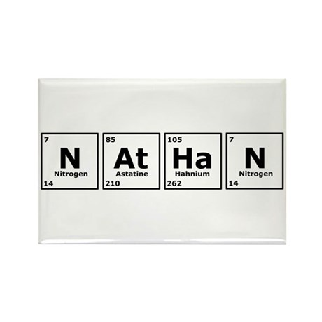 Nathan Rectangle Magnet (10 pack)