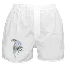 Raccoons Boxer Shorts