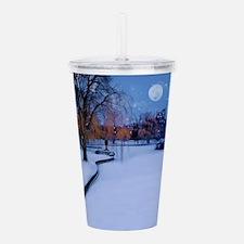 Boston Commons Frozen Acrylic Double-wall Tumbler