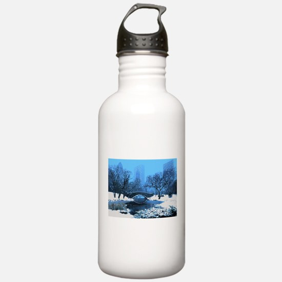 Central Park NY Bridge Water Bottle