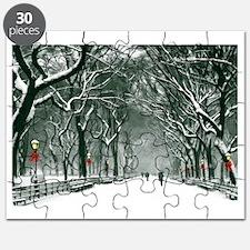 Central Park Snowy Path Puzzle