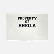 Property of SHEILA Magnets