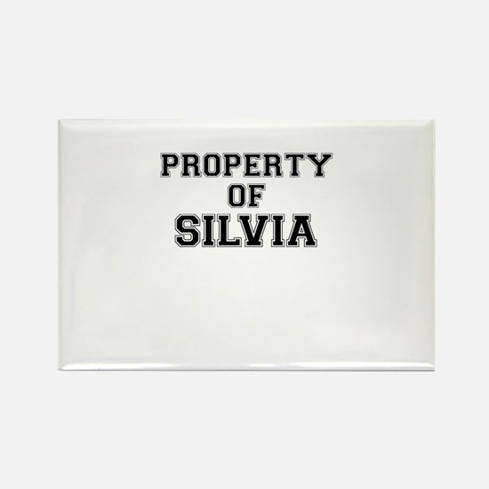 Property of SILVIA Magnets