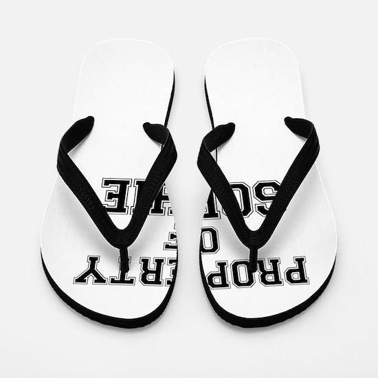 Property of SOPHIE Flip Flops