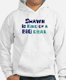 Shawn is a big deal Jumper Hoody