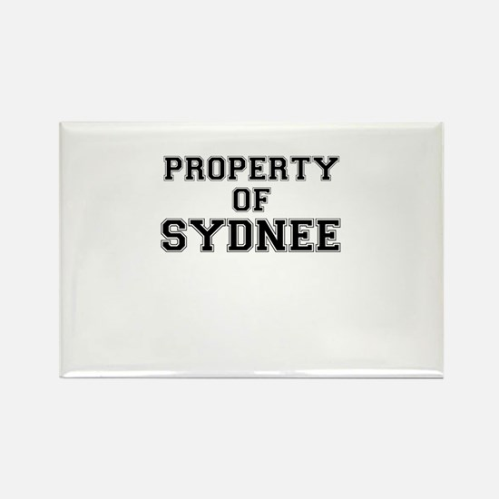 Property of SYDNEE Magnets