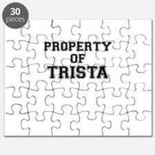 Property of TRISTA Puzzle