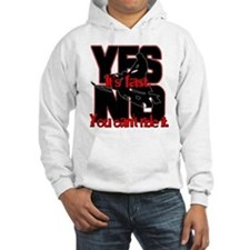 Yes It's Fast - No You Can't Jumper Hoody