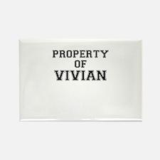 Property of VIVIAN Magnets