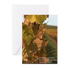 Vineyard Greeting Cards (Pk of 10)