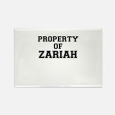 Property of ZARIAH Magnets