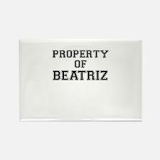 Property of BEATRIZ Magnets