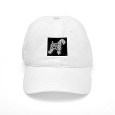 SCWT on black Baseball Cap