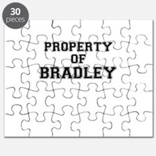 Property of BRADLEY Puzzle