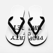 Property of BRIDGET Flip Flops