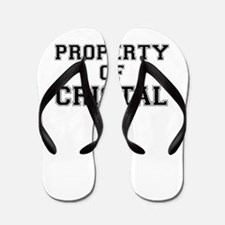 Property of CRISTAL Flip Flops