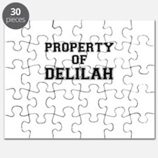 Property of DELILAH Puzzle