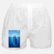 Iceberg Nature Photography Boxer Shorts