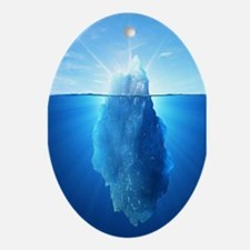 Iceberg Nature Photography Oval Ornament