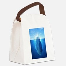 Iceberg Nature Photography Canvas Lunch Bag