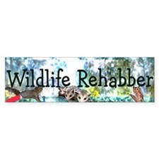 Wildlife Rehab Bumper Car Sticker
