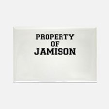 Property of JAMISON Magnets