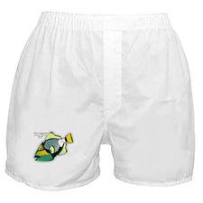 Titan Triggerfish Boxer Shorts