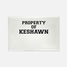 Property of KESHAWN Magnets