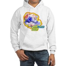 Unique Crystallography Hoodie