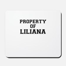 Property of LILIANA Mousepad