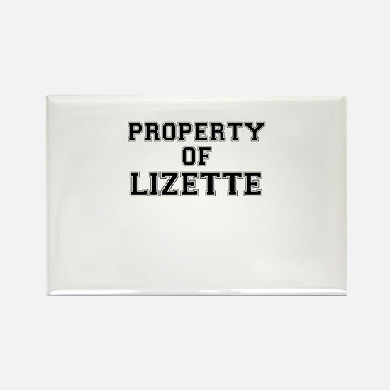 Property of LIZETTE Magnets