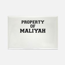 Property of MALIYAH Magnets