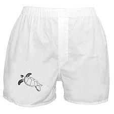 Sea Turtle Lineart Boxer Shorts