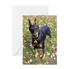 Doberman 1 Greeting Card