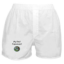 My First Passover Boxer Shorts