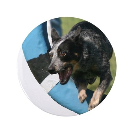 "Blue Heeler Agility Artwork 3.5"" Button"