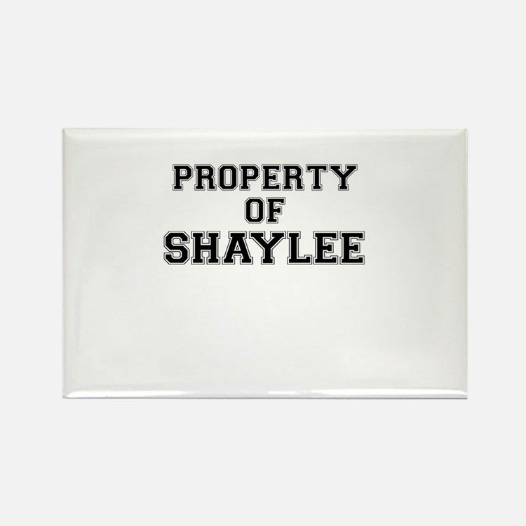 Property of SHAYLEE Magnets