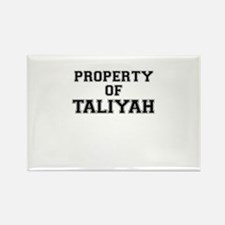 Property of TALIYAH Magnets