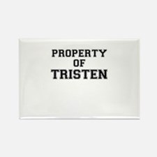 Property of TRISTEN Magnets