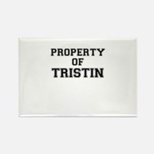 Property of TRISTIN Magnets
