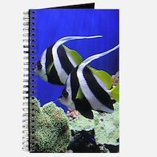 Helaine's Angel Fish Journal