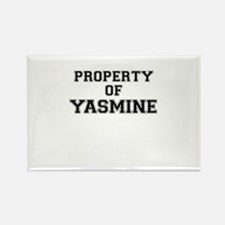 Property of YASMINE Magnets