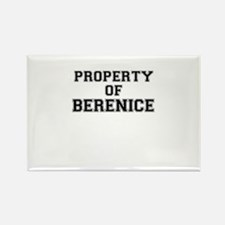 Property of BERENICE Magnets