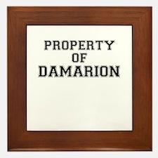 Property of DAMARION Framed Tile