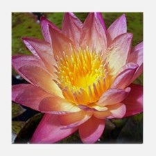 Lovely Pink Water Lily Tile Coaster